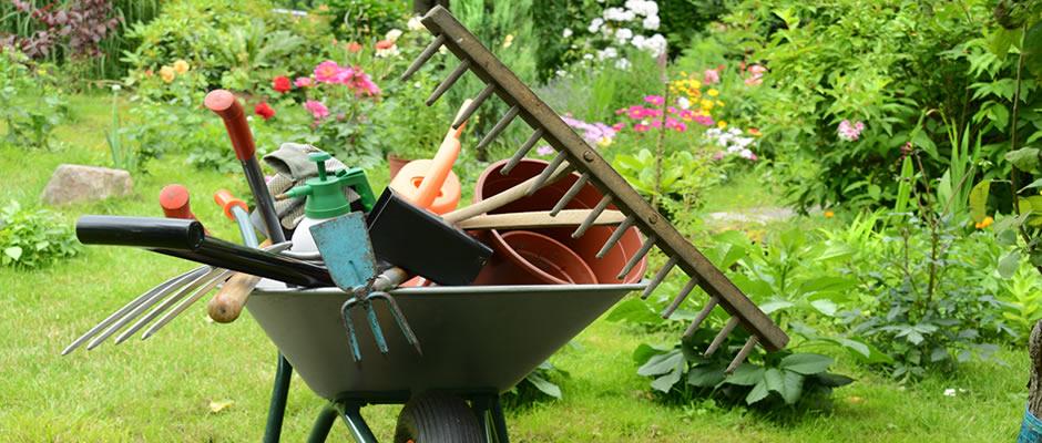 Tierra Animal apuesta por productos de horticultura y jardinería